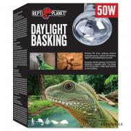 Žárovka REPTI PLANET Daylight Basking Spot (50 W)