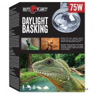 Žárovka REPTI PLANET Daylight Basking Spot (75 W)