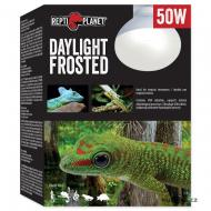 Žárovka REPTI PLANET Daylight Frosted (50 W)